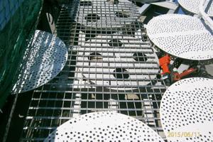 """An den weißen Aluminiumschienen kann man sich mit einem Gleiter einhängen und gesichert am Dachrand entlanggehen<span class=""""bildnachweis"""">Foto: Michael Zapf</span>"""