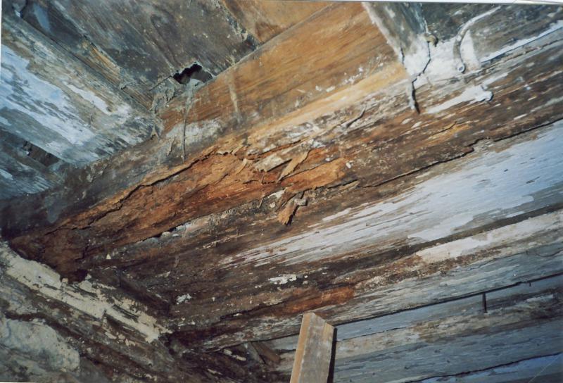 Häufig Schadhafte Dachstühle und Dächer - bauhandwerk UA05