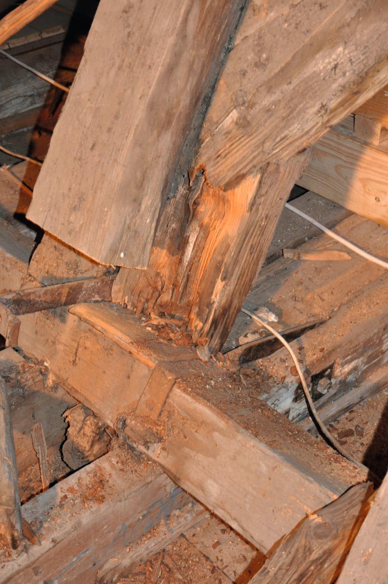 Dachstuhlsanierung mit Profiwerkzeugen - bauhandwerk