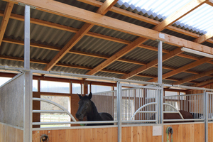Die Pferdeboxen der neuen Reitanlage bieten Platz für insgesamt 30 Pferde