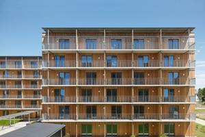Hinter den Fassaden aus Holz verbirgt sich ein Tragwerk aus Massivholzwänden und -deckenFoto: Paul Ott