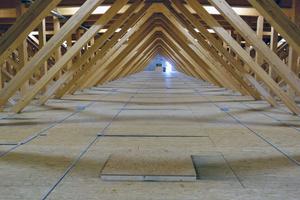 Die mit OSB-Platten beplankten Kastenelemente sind auf den Untergurten der Fachwerkträger verlegt. So entsteht im Dach Raum für Leitungen und Installationen Fotos (3): Messe Dornbirn