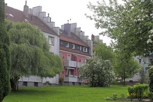 """Unsanierte Dächer des gemeinnützigen Wohnungsvereins zu Bochum. Jedes Jahr sollen 1300 m<sup>2</sup> mehr Dachfläche zur Luftreinigung dazukommen<div class=""""bildnachweis"""">Foto: Nelskamp</div>"""