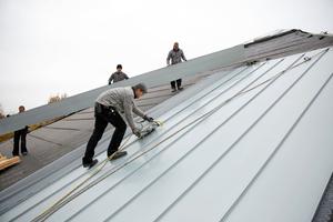 Auf der Rauhspundschalung verlegen die Dachdecker Unterdeckbahnen, darüber Titanzinkschare