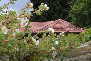 """Für die Eindeckung des Daches entschied man sich 2004 für die Dachziegel """"DS 5"""" von Nelskamp in """"Nibra""""-Qualität"""