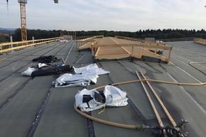 Die Konstruktion der Lichtbänder auf dem Dach waren auch Teil der Zimmererleistung, das Glasdach selbst wurde von Metallbaubetrieb Trumpf in Karlsruhe gefertigtFoto: Holzbau Amann