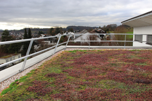 """Links: Mit dem Geländer """"Fallnet ASG"""" wird das Dach zum sicheren Arbeitsplatz für die Pflege der Dachbegrünung oder Wartung von Anlagen<br />"""