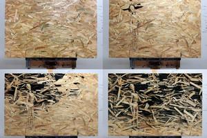 Mit Bleistift und Tusche schafft der spanische Künstler Pejac Kunstwerke auf OSB-Platten