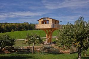 """Das Baumhaus steht auf dem Gelände eines landwirtschaftlichen Anwesens und kann zukünftig besichtigt und gemietet werden<span class=""""bildnachweis"""">Foto: Roland Krieg</span>"""
