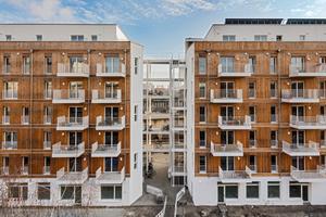 Das Projekt Gemeinschaftswohnen im Wedding, umgesetzt von der Holzbauunion, gewann beim Berliner Holzbaupreis in der Kategorie Neubau<br />