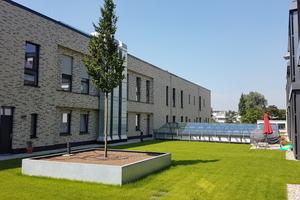 Die fertige Dachfläche mit zwei Bäumen in Hochbeeten und der Glaspyramide in der Mitte, die einen Innenhof überdacht