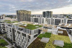 Im urbanen oder industriellen Bereich können Gründächer einen Ausgleich zur Versiegelung von Flächen bilden<br />