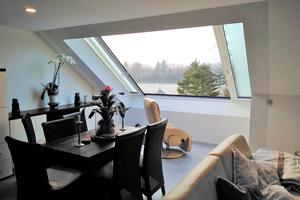 Das Fenster bringt mehr Licht ins Dachgeschoss und ermöglicht einen Ausblick auf den Pferdehof