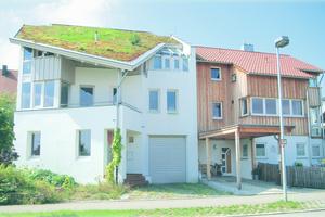 Links: Gründächer wirken schützend, schall- und wärmedämmend und sind bis zu einer Dachneigung von 35° umsetzbarFotos: Zinco