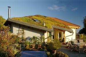 Dachdecker können für mehr grüne Dächer in Wohngebieten sorgen, beispielsweise mit naturnahen Extensivbegrünungen<br />