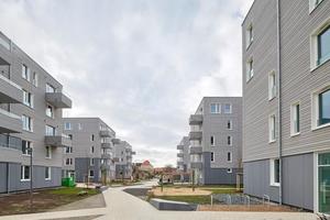 Den ersten Platz des Niedersächsischen Holzbaupreises 2020 belegte die Üstra-Siedlung in Brettsperrholzbauweise in Hannover<br />