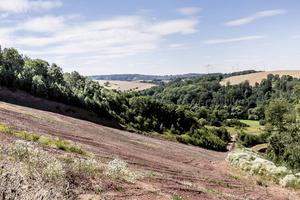 Der Teistunger Buntsandstein wird direkt am Produktionsstandort in Thüringen abgebaut