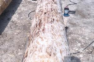 Für die Baumstammfassade wurden im Sägewerk ein Jahr lang etwa 200 möglichst gerade Baumstämme ausgesucht, eingelagert und Stück für Stück geschält