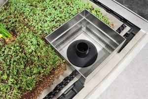"""Rechts:  Das """"Retentions-Gründach"""" speichert Wasser und lässt es zeitverzögert in die Kanalisation abfließen"""
