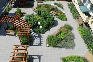 Der Dachgarten des Alten- und Pflegeheims St. Elisabeth in Marburg ist mit den Obst- und Gemüsepflanzen ein Beispiel für Urban Farming