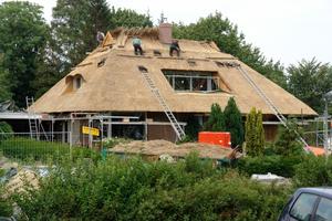 """So schön kann ein Reetdach sein: Bild von einer Reetdachbaustelle in Burgstaaken auf Fehmarn<span class=""""bildnachweis"""">Foto: IG Pro Reet</span>"""